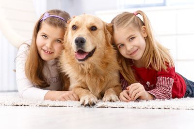 Home salt therapy for children and pets