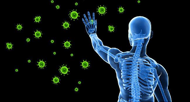 Boosting Immune System
