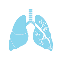 COPD - Lungs